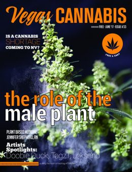 vegas-cannabis-magazine-june-2017-cover