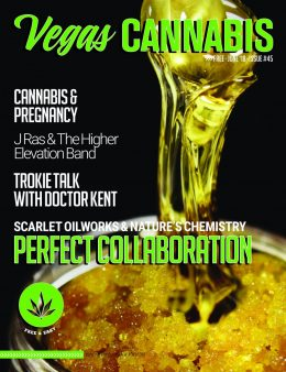 vegas-cannabis-magazine-june-2018
