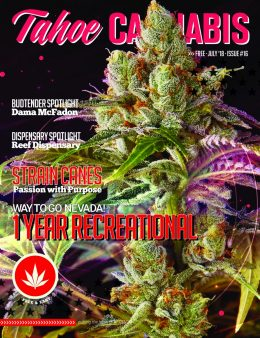 tahoe-cannabis-magazine-july-2018